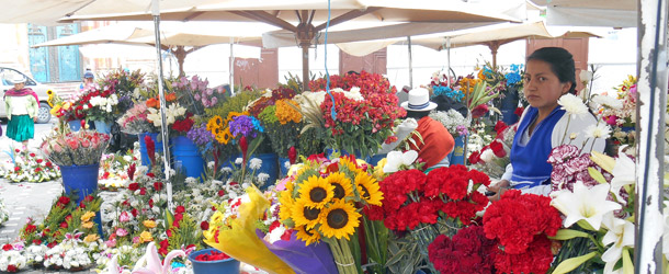 A typical Cuenca scene at the flower market beside the cathedral where students can practice speaking Spanish