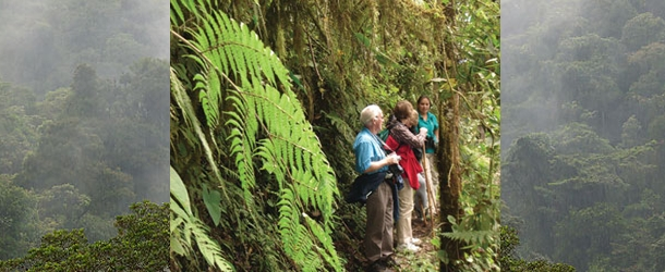 Students explore the cloud forests of Ecuadow with a Spanish course with Yanapuma