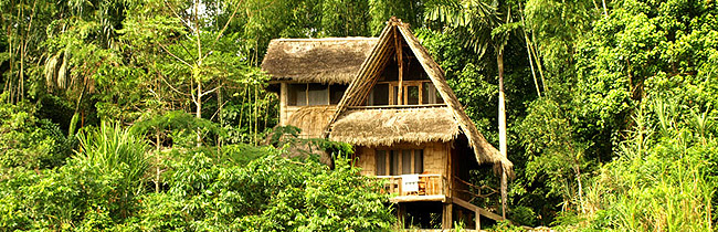 Spanish courses in the Amazon rainforest at Yachana Lodge