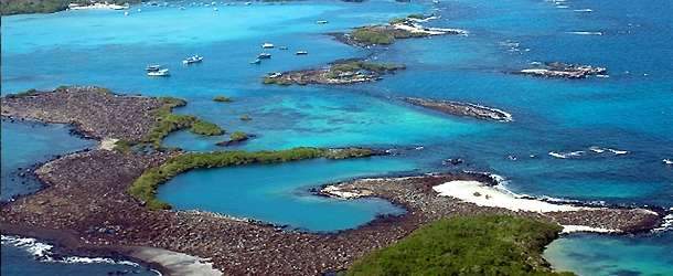 students taking spanish courses can visit the Galapagos Islands and explore this unique habitat