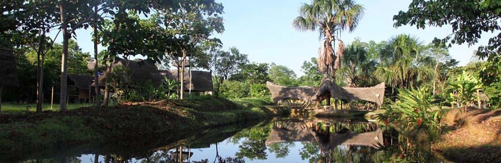 Spanish Classes In The Amazon Rainforest At Suchipacari Lodge