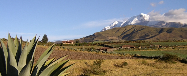 spanish in quito and excursion to cotopaxi
